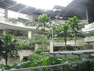 A început ofensiva verde: malluri, supermarketuri şi cafenele, transformate în construcţii eco