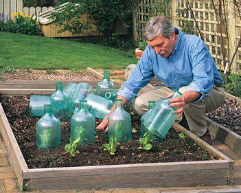 Grădinile trebuie pregătite deja pentru primăvară