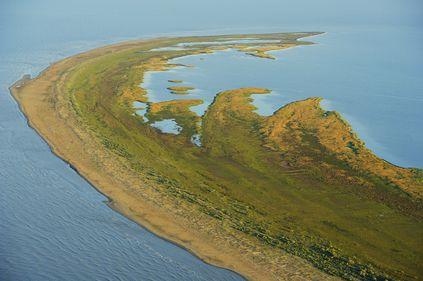 Insula Sacalin, lângă Sfantu Gheorghe: pământul nou, imposibil de cumparat, pentru care mulți încalcă legea