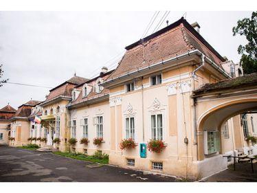 Castel din Transilvania scos la licitație. Prețul pornește de la 650.000 de euro