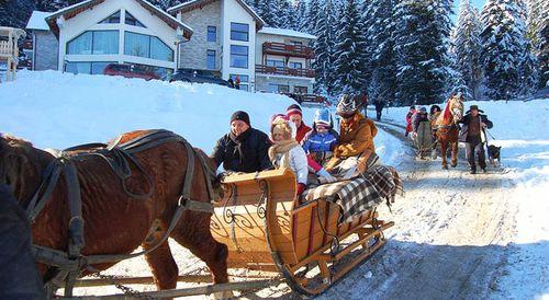Românii au plătit zeci de milioane de euro pentru sărbători petrecute la sat