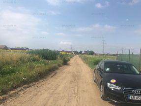 teren in Berceni de vânzare Ilfov
