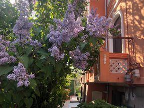 apartament in Parcul Carol de închiriat Bucuresti