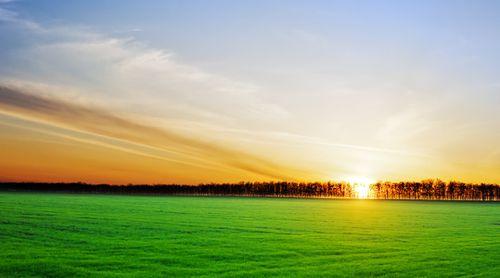 Pământurile la control! Planurile agricultorilor leneși și falsul în acte, dejucate prin satelit