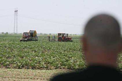 Străinii ne cumpără ţara la hectar: Cum s-a scumpit pământul românesc cu 40% în plină criză