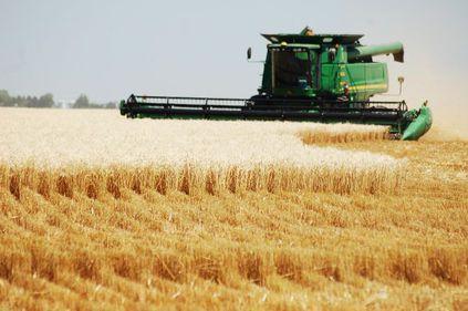 România, țara cu cel mai ieftin teren arabil din UE