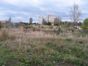 Guvernul vrea să îi oblige pe proprietarii de terenuri să le cureţe