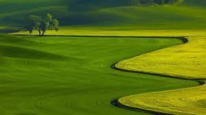 Din teren agricol fără perspective, într-o mină de aur: noul trend imobiliar