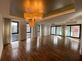 Apartament 5 camere 230 mp