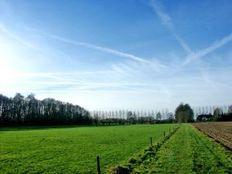 Colliers: Preturile terenurilor au revenit la nivelul din 2005 - 2006