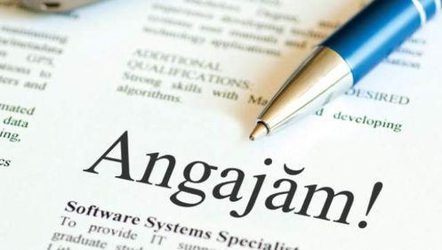 România caută manageri privaţi pentru companiile de stat. Mii de CV-uri au fost deja înscrise