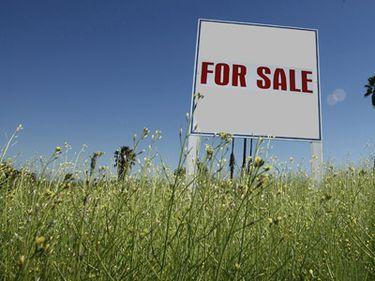 Străinii ne cumpără ţara bucată cu bucată. Guvernul e îngrijorat
