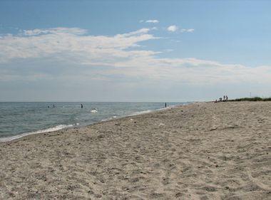 15,5 hectare din plaja Mării Negre, închiriate prin licitaţie
