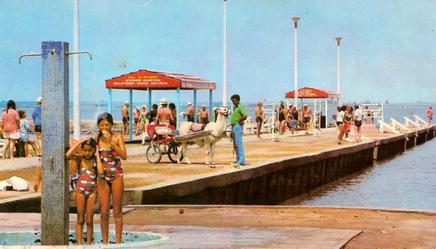 Epecuen - orașul pierdut sub ape acum 25 de ani, iese la suprafață [GALERIE FOTO]