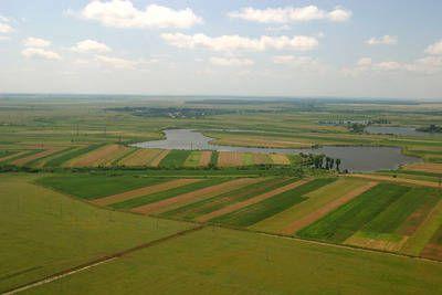 Străinii au scos din circuitul agricol în judeţul Timiş aproape 800 de hectare în 2011