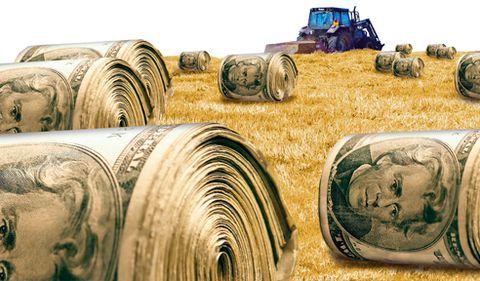 Agricultura românească: mina de aur care nu este exploatată, din lipsă de fonduri