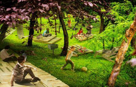 Spaţiile de picnic: necesare prin lege, proiectate şi gata de implementare