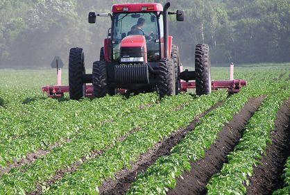 În agricultură, o idee bună aduce venituri triple