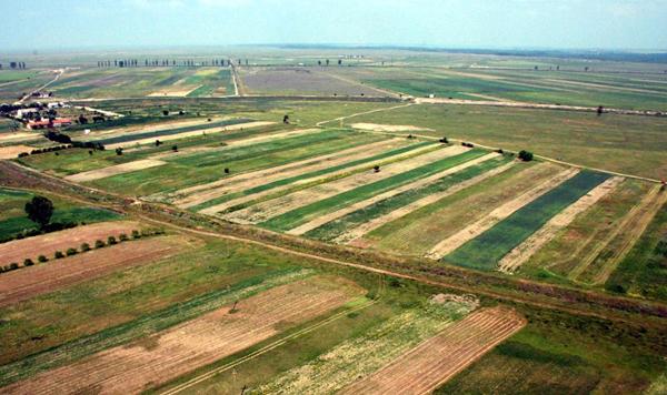 Preţurile terenurilor au stagnat în ultimii doi ani