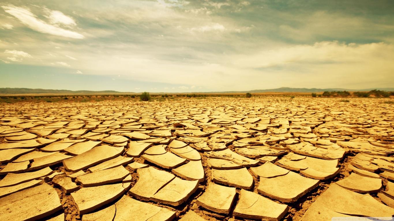 Terenuri fertile, transformate în deșert de lăcomia agricultorilor. Efectul nedorit al producției masive